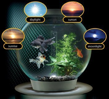 biorb aquarium lighting
