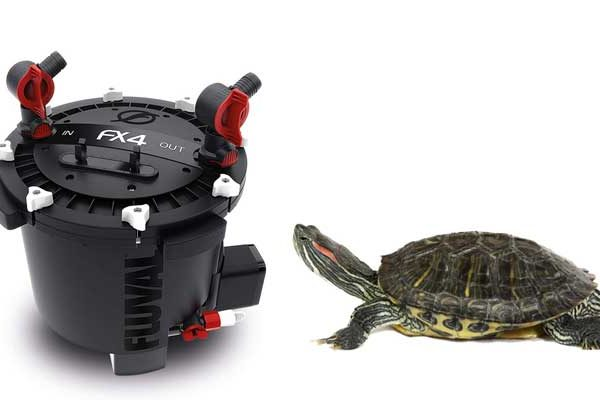 best canister filter for turtles