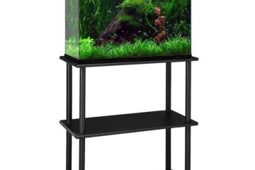 best 10 gal fish tank stand