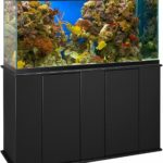 Best 55 Gallon Fish Tank Stands