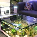 Best Aquarium Coffee Table